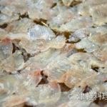真鱈の昆布締め